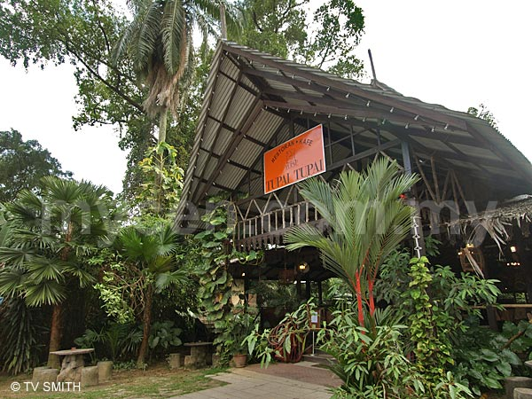 Picture Of Tupai Tupai Restaurant